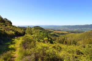 1750 Moon Mountain Road, Sonoma